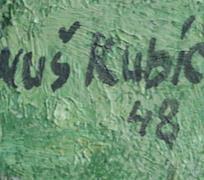 Januš Kubíček